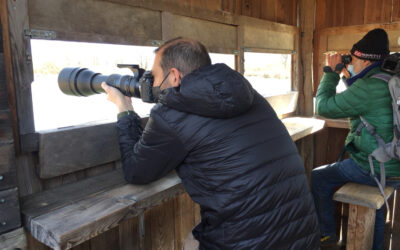 Der echte Fotograf im Roman